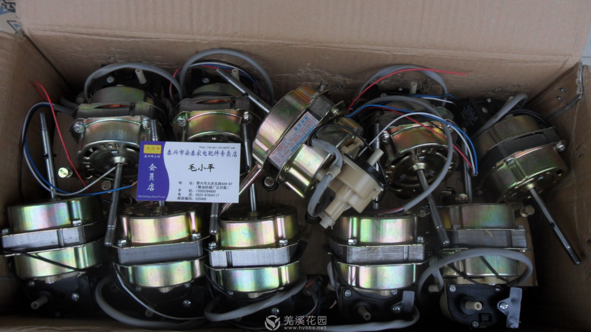 电风扇电机11.JPG